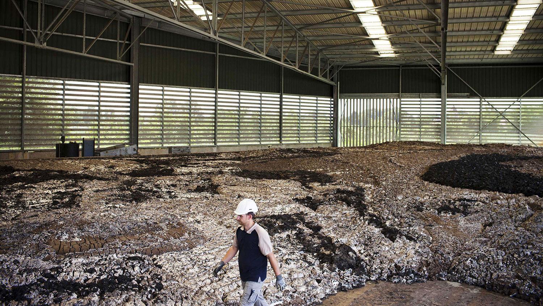Gestion des boues d'épuration