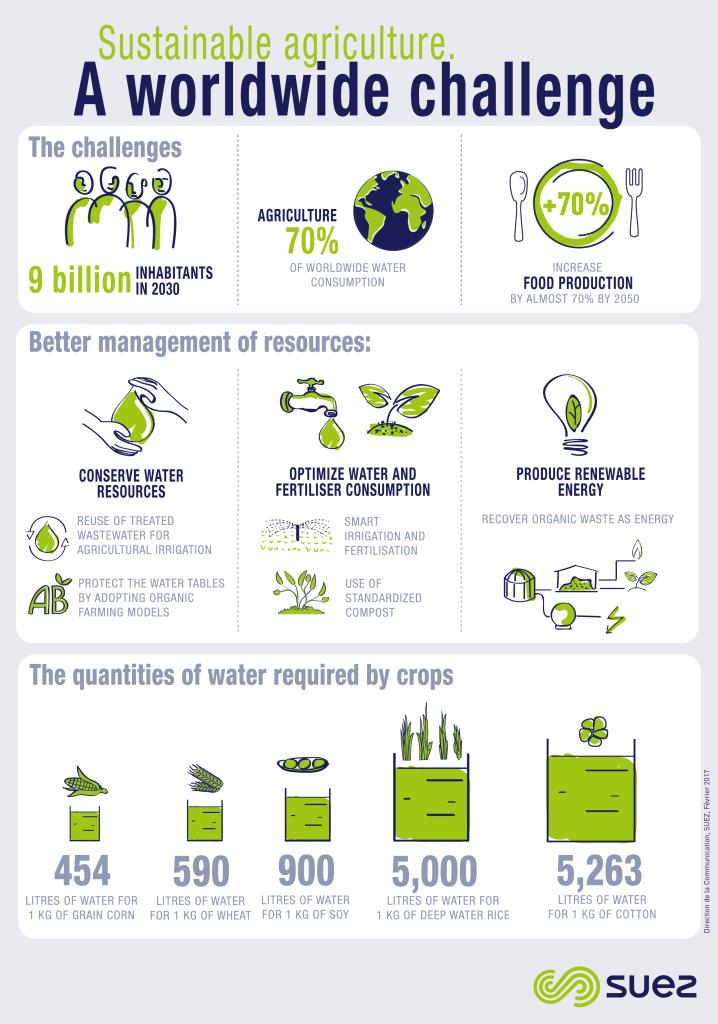 A worldwide challenge infographie